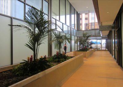 建物の一階